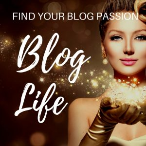 fining your blog niche
