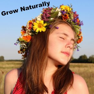 Google Grow Natural Links