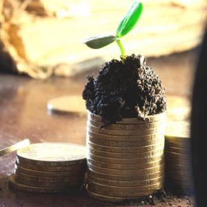 blogging business growing