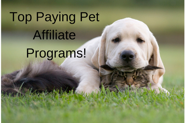 Top Paying Pet Affiliate Programs